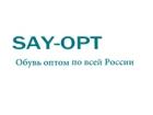 SAY-OPT