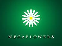 Франшиза Megaflowers