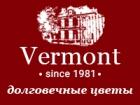 Франшиза Vermont