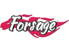 Франшиза Forsage