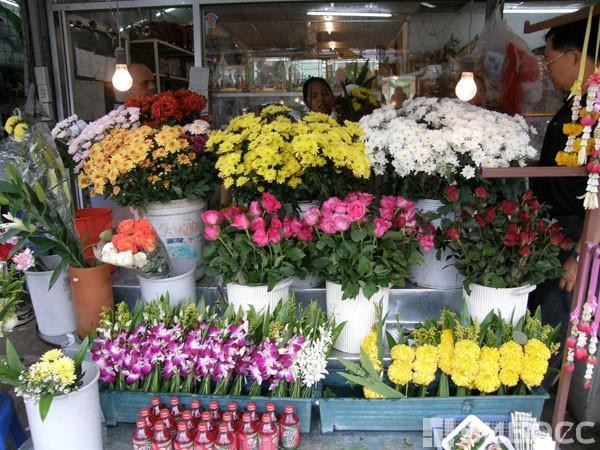 какие цветы продают в магазине