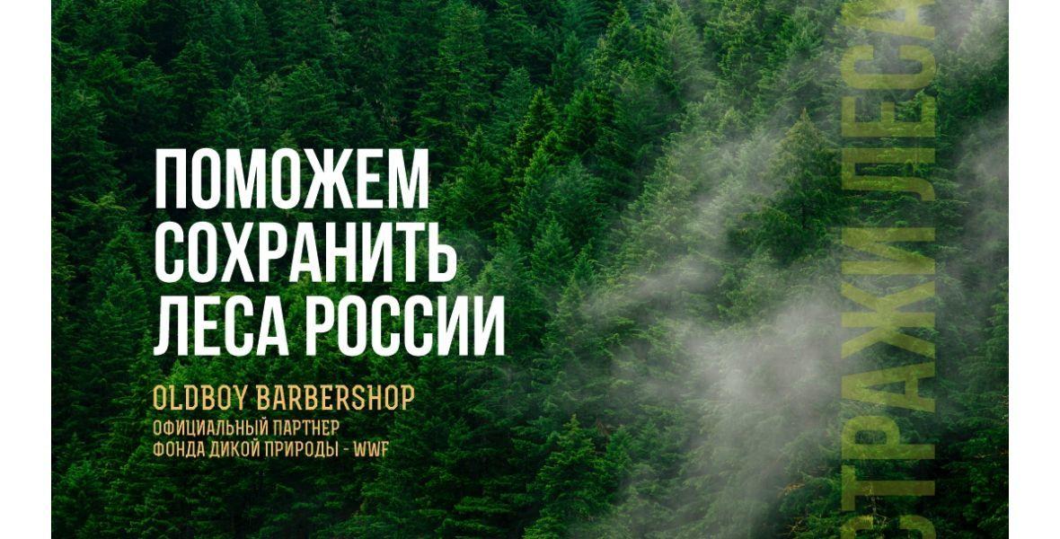 Проект «Стражи леса»