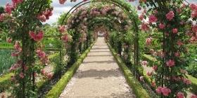 Датчик Edyn Garden - верный помощник в саду