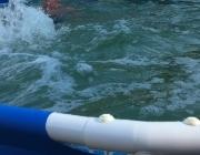 Вариант бассейна с морской водой (сборный, сезонный)