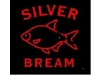 Silver Bream