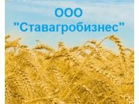 ООО Ставагробизнес