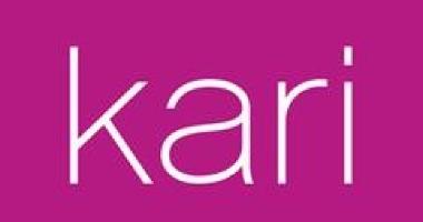 Внимание всем предпринимателям! Успейте купить франшизу Kari