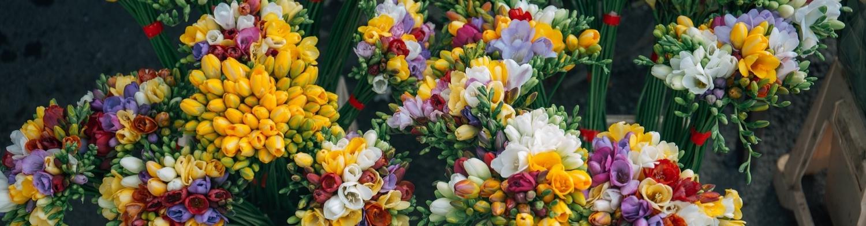 Бизнес-план цветочного магазина с расчетами: готовый пример. Открываем цветочный бизнес с нуля
