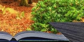 Производство книг с дополненной реальностью