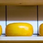 Изображение - Как пользоваться готовыми примерами бизнес-проектов cheese-mlfj8a.cropped140x140