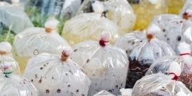 Бизнес по производству биопакетов
